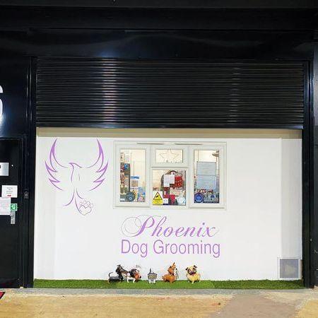 Phoenix Dog Grooming
